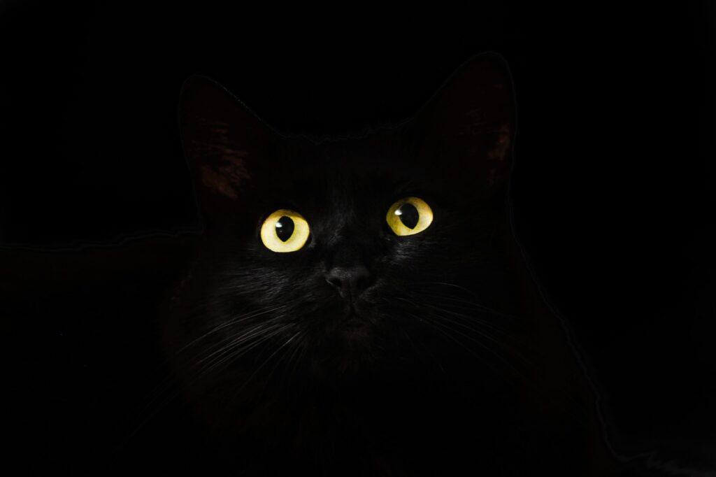 Color Poem: Black